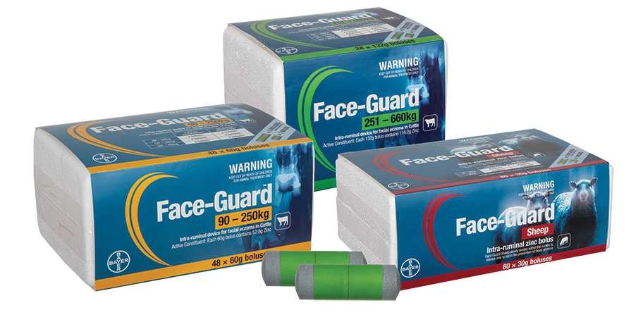 face-guard-product-2